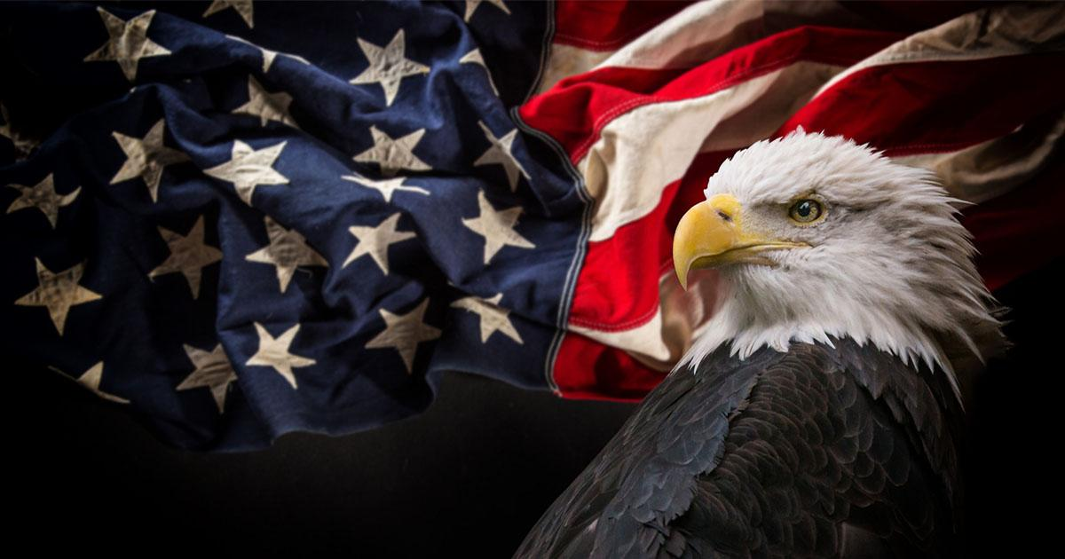 college instructor patriotism suggests black americans